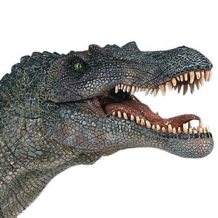 Spinosaure Spinosaurus Article Sur Ce Dinosaure