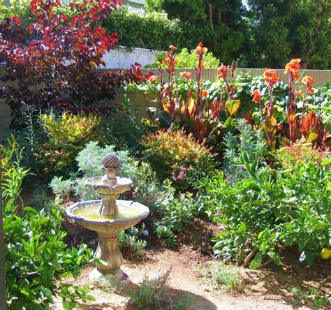 Westminister Ca Lush Ca Native Drought Tolerant Garden Drought Tolerant Garden Design