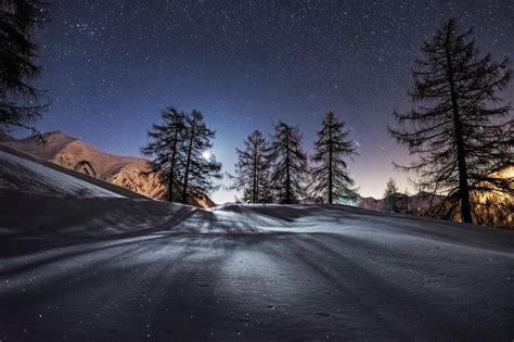 trees night snow mountains  resolution