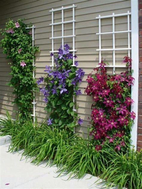 decoracion de jardines con piedras y cañas m 225 s de 25 ideas incre 237 bles sobre jardines peque 241 os con