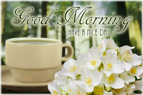 morning image morning pictures ecards greetings wishes