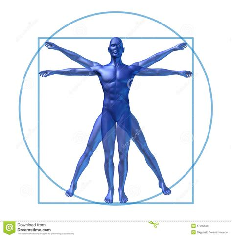 human diagram diagram www pixshark images galleries with a bite