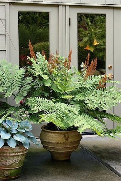 7 container gardening ideas beyond summer flowers