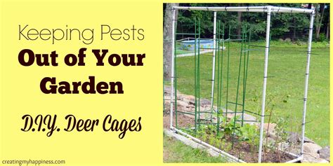 how to keep pests out of your garden keeping pests out of your garden d i y deer cages