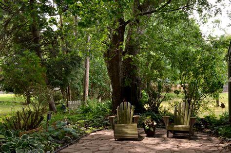 Trees For Backyard Shade by Triyae Trees For Backyard Shade Various