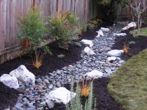 drainage trench becomes a stream northwest botanicals inc
