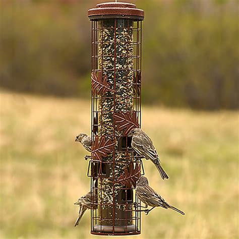 Cylinder Bird Feeder Duncraft Squirrel Be Cylinder Feeder