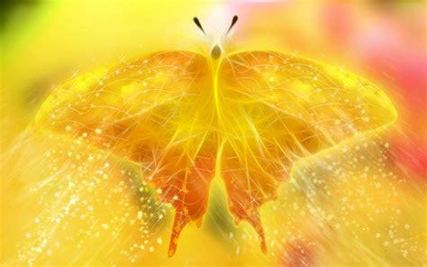 pretty orange orange butterfly beautiful bug butterfly glitter