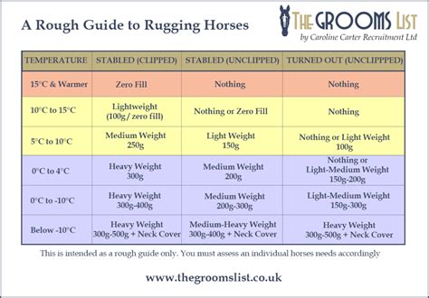 rug weight guide a basic guide to rugging horses the grooms list