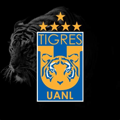 imagenes chidas tigres uanl imagenes de los tigres uanl im 225 genes chidas