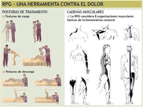 cadenas musculares mezieres pdf estiramientos globales p 225 gina web de saludactiva