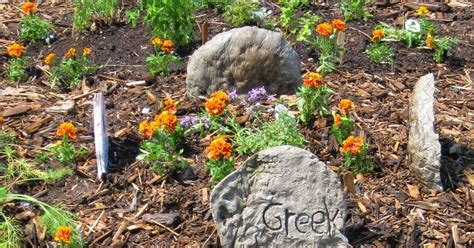 think globally garden locally an investigation of gardening sustainable agriculture and healthy pollinators books think global garden local herb garden