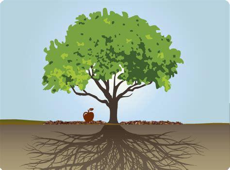 Tree Family family trees pearlsofprofundity