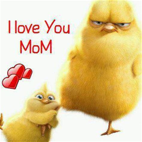 imagenes de i love you mom i love you mom xcitefun net