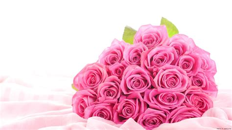 flower expert red and pink roses image flower rose pink wallpaper 1920x1080 22925