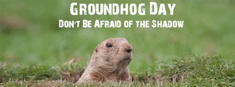 groundhog day one day picture of groundhog groundhog images pictures of