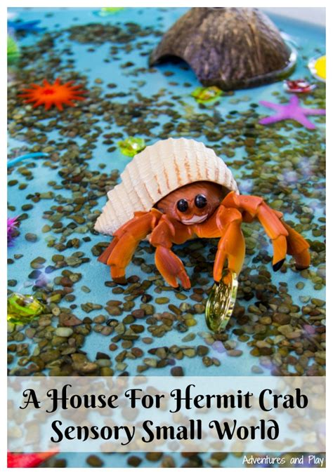 a house for hermit crab build a house for hermit crab sensory small world