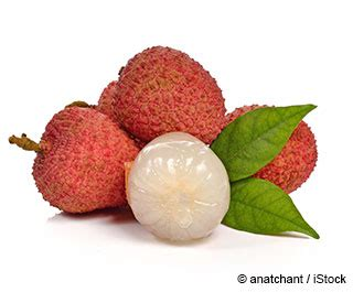 fruit similar to lychee what is lychee good for mercola com