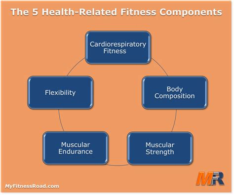 myfitnessroad health related fitness components