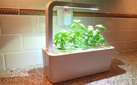 click and grow review click and grow garden at home in the future