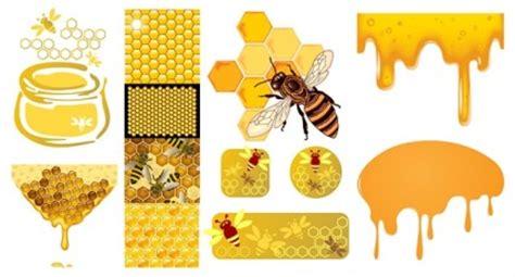 Madu Sarang Honey Comb lebah madu honeycomb vektor vektor hewan vektor gratis
