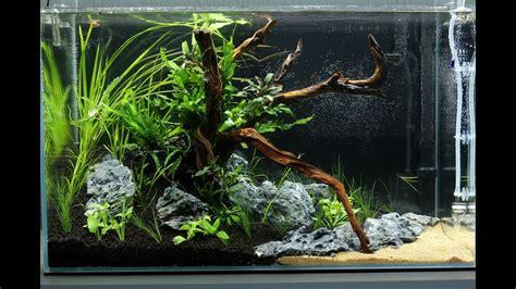 Ada Aquascape by Aquascape Ada Cube Garden 60p A Of Mekong
