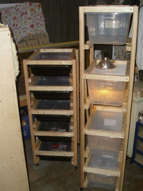 Rodent Racks For Sale by American Reptiles Hibians For Sale Adoption Buy