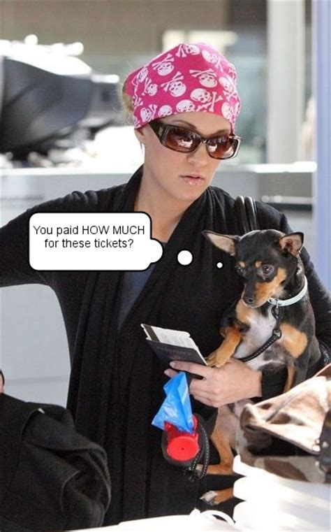 carrie underwood dogs carrie underwood cradles ace at lax