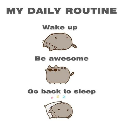 Funny Daily Memes - my daily routine pusheen know your meme