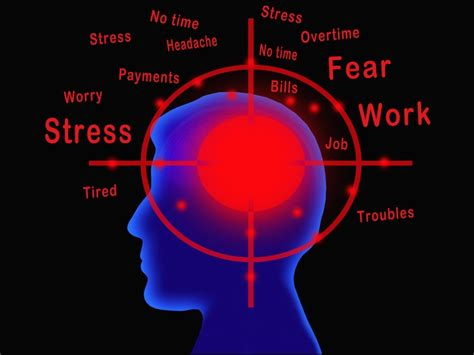 anxiety what turns it on what turns it books stress and the brain research finds new areas of the