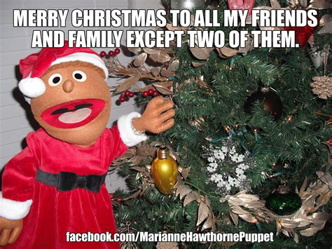 Family Christmas Meme - merry christmas to all my friends and family except two of
