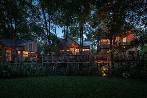 forest house backyard jungle stunning eco friendly homes engulfed in