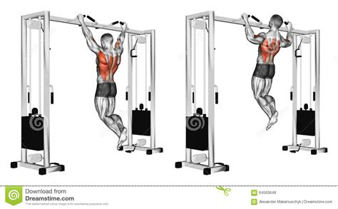 Machine Bench Press Vs Bench Press Exercising Pulling Up Wide Grip Hand On The Crossbar