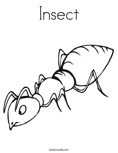 Insect Coloring Page Twisty Noodle Insect Coloring Page