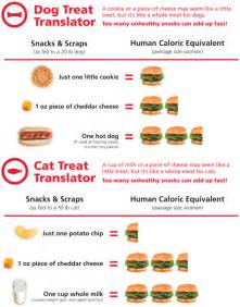 learn what human food does to your pet s weight hill s pet