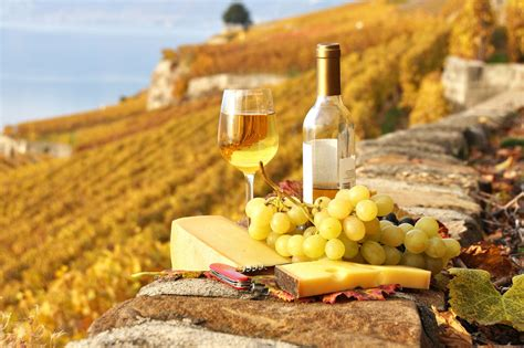 Food grapes Wine cheese. Android wallpapers for free.