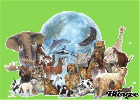 imagenes de animales en peligro de extincin 07 view image animales en peligro de extincion fotograf 237 a 131115091