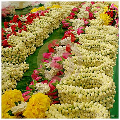 Flower Garlands For Indian Weddings Jasmine Flowers And South Indian Weddings Theknotstory