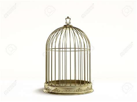 Bird In A Cage birdcage saloon bird cage