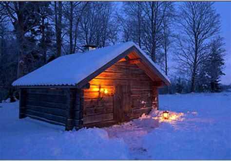 Free 3d Software images snowy night theme
