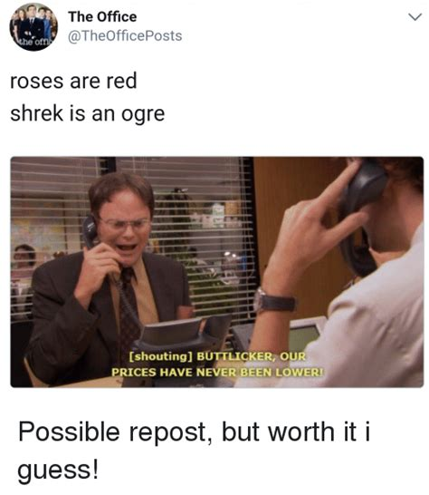 Is A Mba Worth It Turning 30 by The Office He Roses Are Shrek Is An Ogre Shoutingl