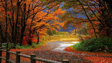 fall landscape autumn wallpapers best wallpapers