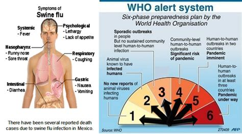 swing flu h1n1 virus symptoms www pixshark com images galleries