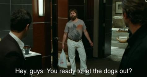 let the dogs out quot hey guys you ready to let the dogs out quot the hangover quote galifinakas