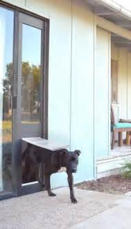 Patio Door Dog Flap by Sliding Glass Dog Door Pet Door For Sliding Glass Door