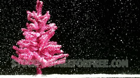 free pink christmas tree in snowfall winter seasonal stock