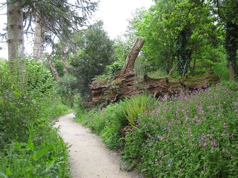 Lost Gardens Of Heligan by The Garden Wanderer The Lost Gardens Of Heligan Uk