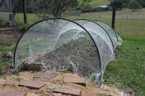 Garden Arch Netting Bird Nets For Garden Beds Green Change