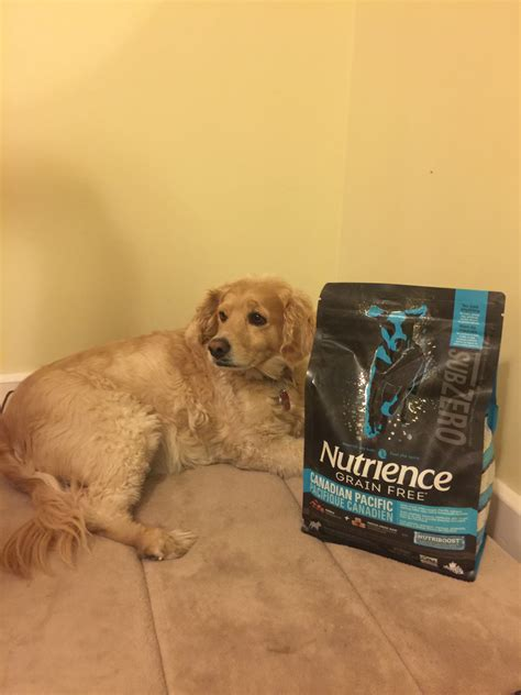 puppy chow reviews nutrience grain free subzero food reviews in food