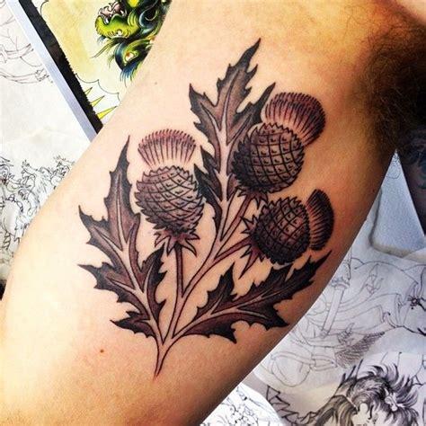 thistle tattoo designs best 25 scottish thistle ideas on